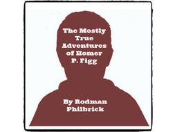 The Mostly True Adventures of Homer P. Figg - (Reed Novel Studies)