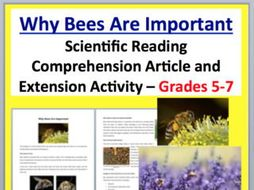 Why Bees Are Important Science Reading Article KS2
