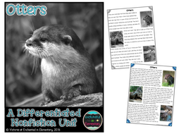 Differentiated Nonfiction Unit: Otters
