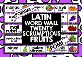 LATIN-FRUITS-WORD-WALL.zip