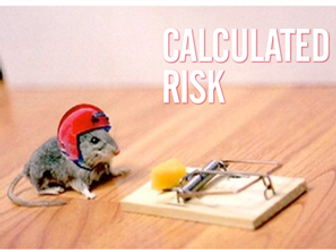 Business Studies - Showing Enterprise Calculated Risk