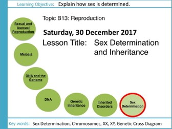 AQA GCSE: B13 Reproduction: L10 Sex Determination