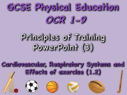 GCSE OCR PE (1.2) Physical Training   - Principles of Training