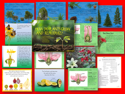 Plant Growth, Reproduction and Life Cycle Lessons with Interactive Student Notebook Lessons