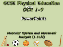 GCSE OCR PE  (1.1b/c) Muscular System and Movement Analysis  - PowerPoints