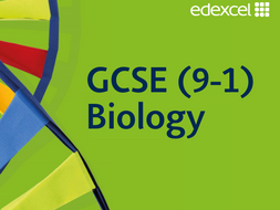 Edexcel 9-1 Biology Topics 5, 6, 7, 8 and 9 Powerpoint and Worksheets