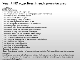 Y1 Continuous Provision Area NC objectives