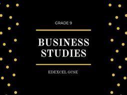 BUSINESS STUDIES FLASHCARDS EDEXCEL GCSE THEME 2