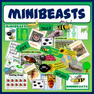 MINIBEASTS INSECTS SCIENCE RESOURCES EARLY YEARS KS1-2 DISPLAY ANIMALS SPRING LIFECYCLE SPIDER