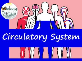 Human Body: Circulatory System Crossword and Word Search