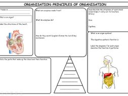 New AQA Specification Organisation Revision