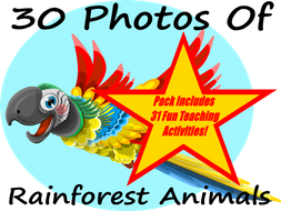30 Photos Of Rainforest animals + 31 Fun Teaching Activities For These Cards