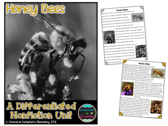 Differentiated Nonfiction Unit: Honey Bees