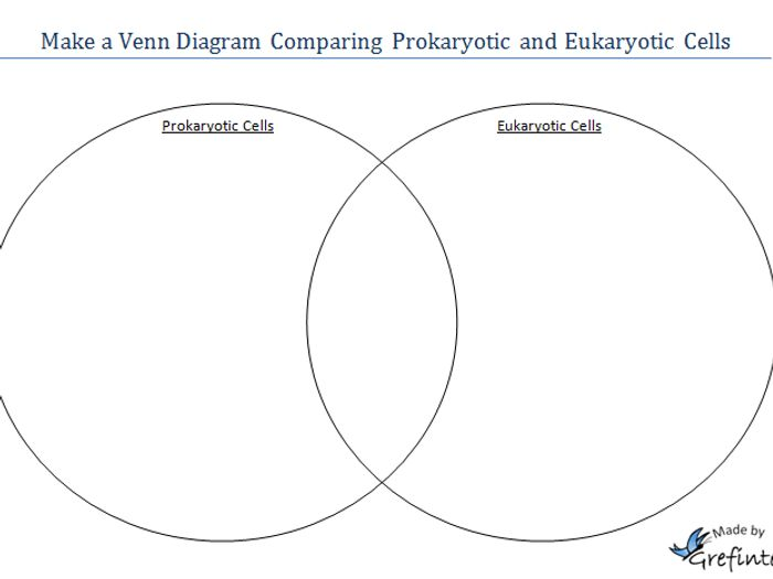 Prokaryotic eukaryotic venn diagram vatozozdevelopment prokaryotic eukaryotic venn diagram ccuart Image collections