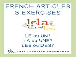 GCSE FRENCH: French definite and indefinite articles worksheets