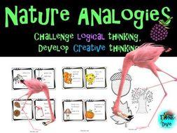 Analogies - Nature Theme Task Cards - Grade 1 -3