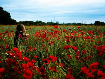 Remembrance Day - Time to Remember Assembly and Lesson Ideas