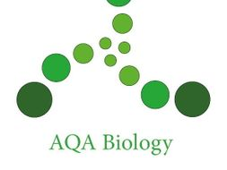 BIOLOGY YEAR 2 AQA A-LEVEL FLASHCARDS
