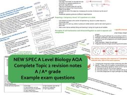 CONCISE A* AS Biology AQA Topic 2 CELLS (structure, mitosis, transport, immunity) revision notes