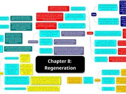 Chapter 8 Regeneration Detailed Thematic Analysis (x2 PAGES)