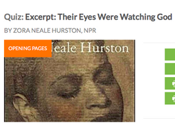 Their Eyes Were Watching God: Teaching & HW Resources: Chapter 1 Vocab List & Comprehension Quiz
