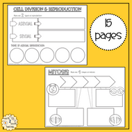 Cell-Division-Doodle-Notes.pdf