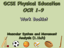 CSE OCR PE  (1.1b/c) Muscular System and Movement Analysis Work Booklet