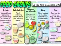science animals including humans food groups lesson by