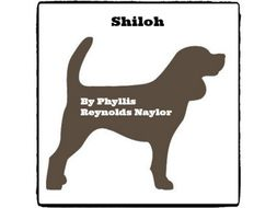 Shiloh - (Reed Novel Studies)