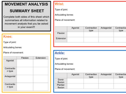 A-Level PE: A&P Summary Sheet Set