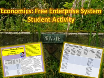 U.S. Economics: Free Enterprise System Student Activity