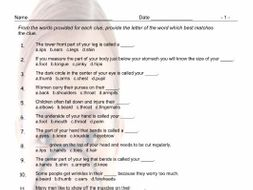 Body Parts Multiple Choice Worksheet