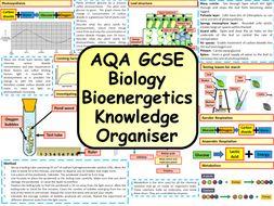 KS4 AQA GCSE Biology (Science) Bioenergetics Revision Knowledge Organiser