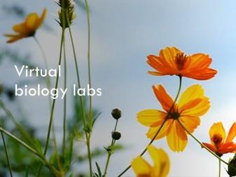 Virtual biology labs