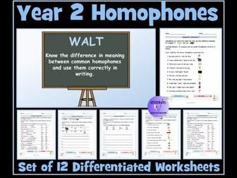 Homophones: Year 2 Worksheets