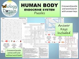 Endocrine-System-puzzles.pdf