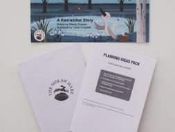Curriculum of Excellence Planning Ideas pack for The Ugly Duckling