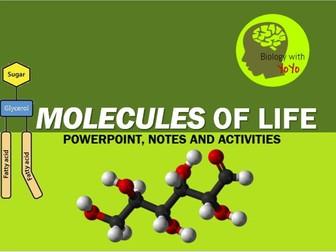 Molecules of Life Presentation