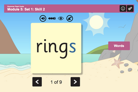Grammar Flash Cards - Adding -s and -ing - Phase 3