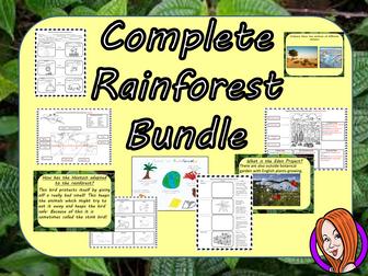 Big Rainforest  Lessons Bundle