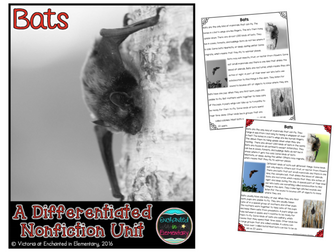 Differentiated Nonfiction Unit: Bats