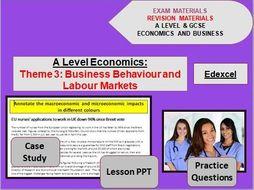 Theme 3 Economics Bundle: Business Behaviour and Labour Markets
