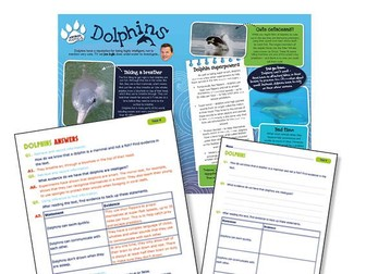 Year 4 Science Reading: Dolphins
