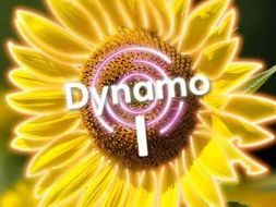 Dynamo 1 Module 4