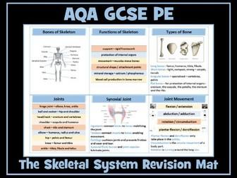 AQA GCSE PE - The Skeletal System Revision Mat