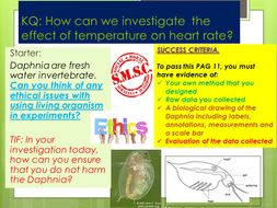 OCR PAG 11: INVESTIGATING THE EFFECT OF TEMPERATURE ON HEART RATE IN DAPHNIA.