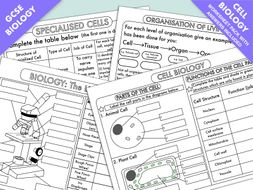 GCSE Biology: Cell Biology Worksheet Pack UPDATED