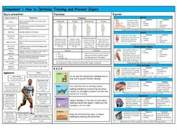 GCSE PE – Edexcel (9-1) – Injuries and Injury Prevention - Knowledge Organiser/Revision Mat