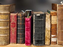 free online literature courses