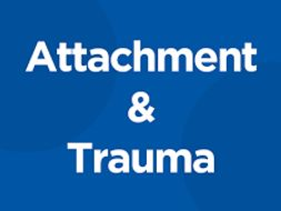 Trauma and Attachment Treasure Box